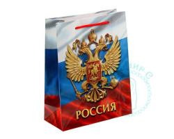 Пакет Россия MS